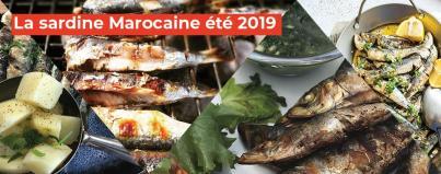 the moroccan sardine summer 2019