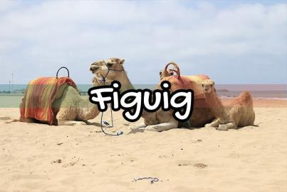 Figuig