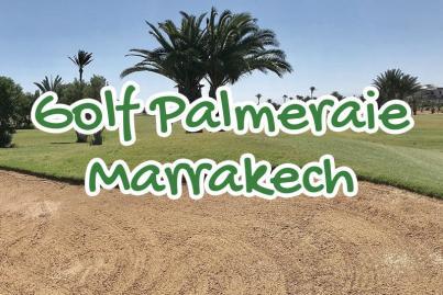 palm, golf, marrakech, palmeraie, maroc