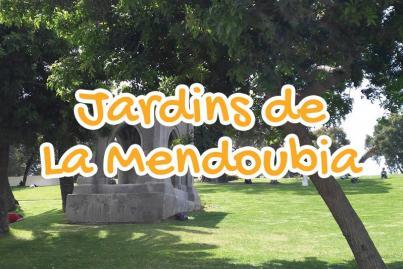 the, mendoubia, garden, tangier, morocco