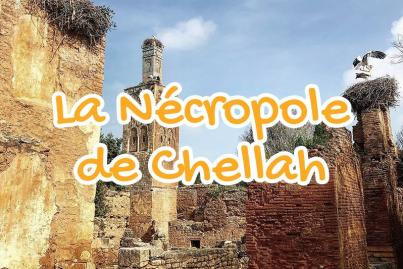 the, chellah, rabat, morocco