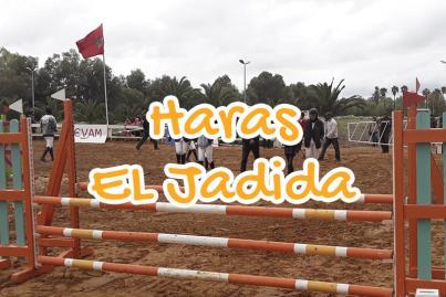 Royal Club Equestre d'El Jadida