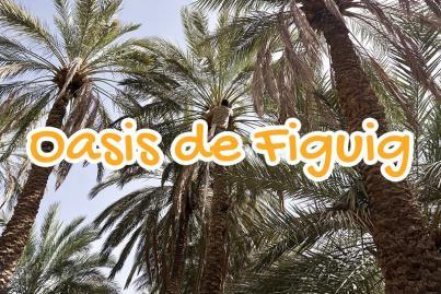 oasis, figuig, errachidia, morocco