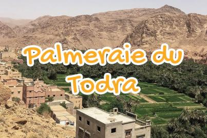 todra, palm, groves, tinghir, morocco