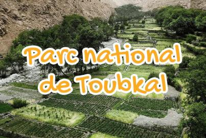 parc, national, toubkal, marrakech, maroc