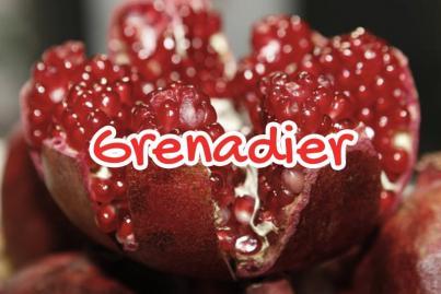 Le Grenadier